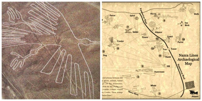 High up on my list of places to visit: The Nazca Lines in Peru