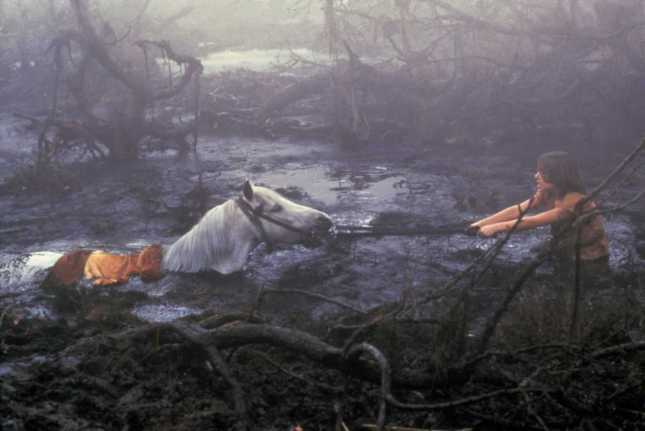 Atrax the horse dies in the Swamp of Sadness, Never Ending Story :-( (image: www.sub-cultured.com)